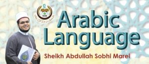 learn arabic language program