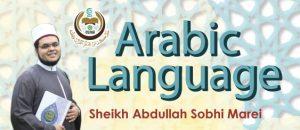 learn arabic language program